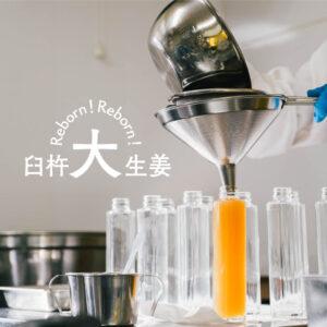 農業生産法人 株式会社西日本農業社-Reborn!臼杵大生姜