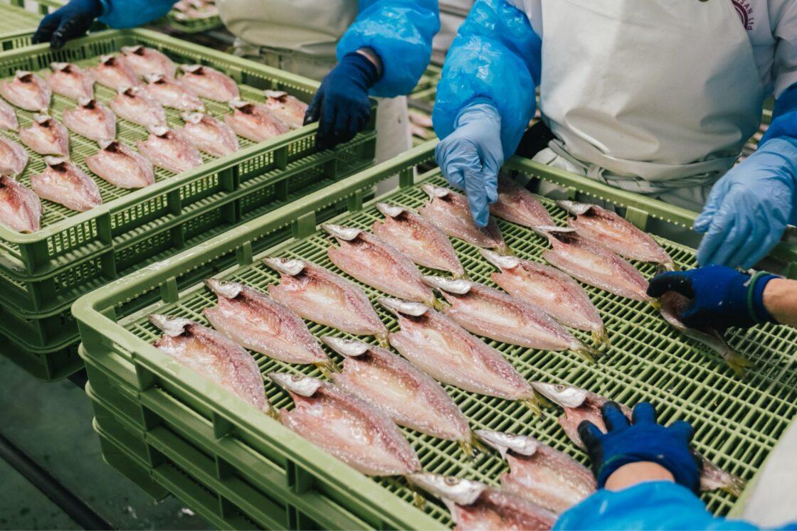 魚の調理様子