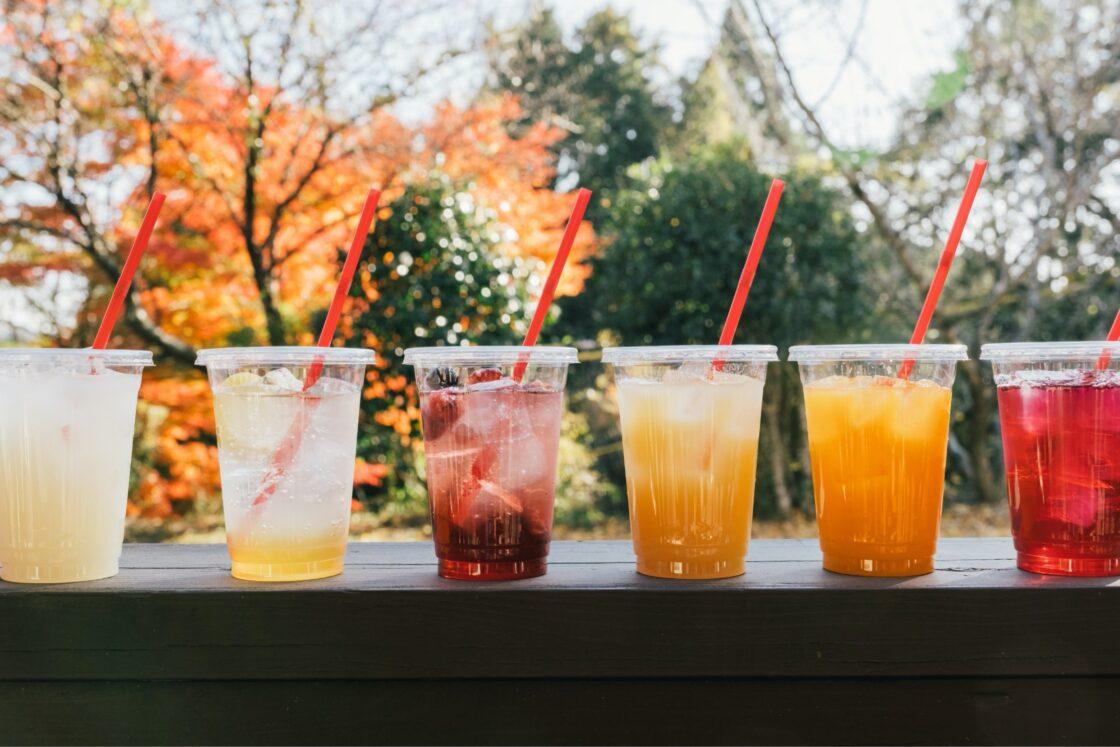 果物を使ったジュースも販売