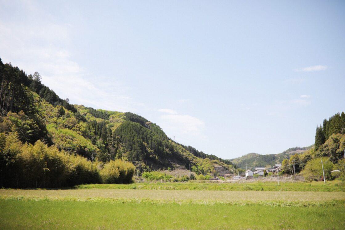 『亀の甲』があるのは、田んぼと山に囲まれた、佐伯市直川大鶴地区