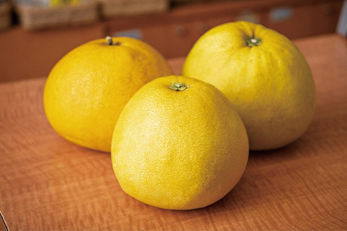 ざぼんは、別名文旦(ボンタン・ブンタン)とも呼ばれる果物