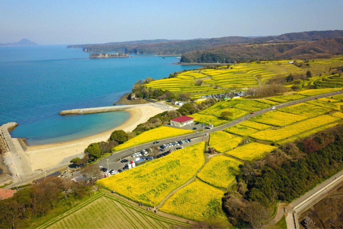 『油花』が会社を構えるのは、国東半島の最先端にある『長崎鼻』