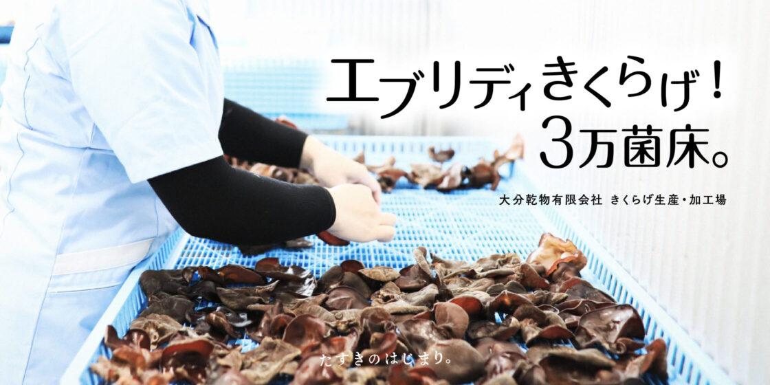 大分乾物有限会社[きくらげ生産・加工場]-エブリディきくらげ!3万菌床。
